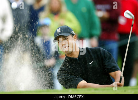 Mar 03, 2005; Miami, FL, USA; TIGER WOODS hits out of the bunker at  the fifteen hole of the Championship at Doral, - Stock Photo