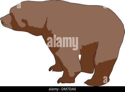 Wild brown bear - Stock Photo