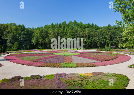 Heath garden / Heidegarten with 140 different heather species at Schneverdingen, Lüneburg Heath / Lunenburg Heathland, Germany