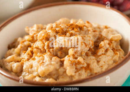 Homemade Healthy Rice Pudding with Brown Cinnamon - Stock Photo