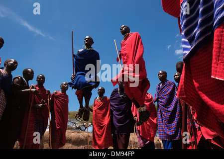 A group of Maasai men taking part in the traditional Adumu dance commonly Known as the Jumping Dance performed in - Stock Photo