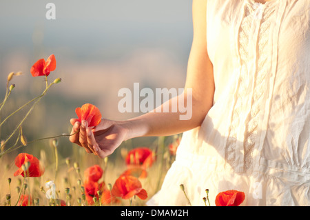 Young woman standing in a cornfield with poppies - Stock Photo