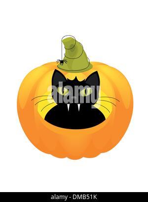 cat on a Halloween pumpkin. - Stock Photo