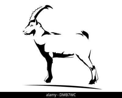 Ibex - goat - Stock Photo