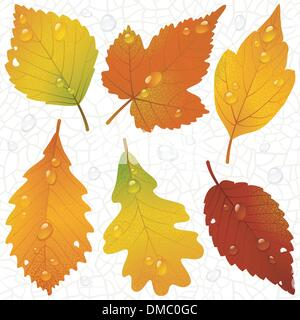Vector autumn leaves and seamless vein background - Stock Photo