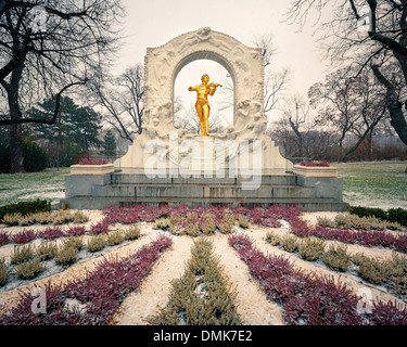 Strauss in snowstorm - Stock Photo