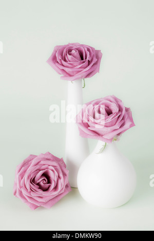 Three pink roses in white vases - Stock Photo