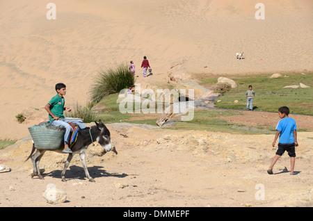 Berber boy riding a donkey a small valley near a Berber village on the coast south of Essaouira Morocco - Stock Photo