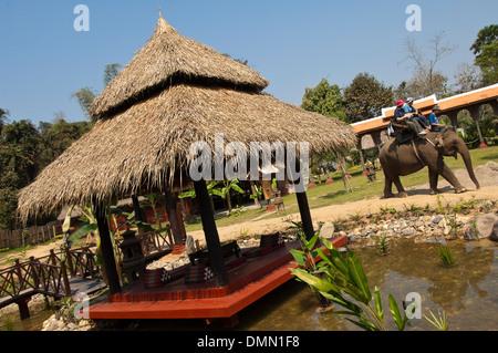 Horizontal portrait of a Western couple enjoying an elephant trek in Laos. - Stock Photo
