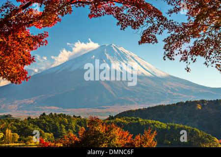 Mt. Fuji with fall Foliage in Japan. - Stock Photo