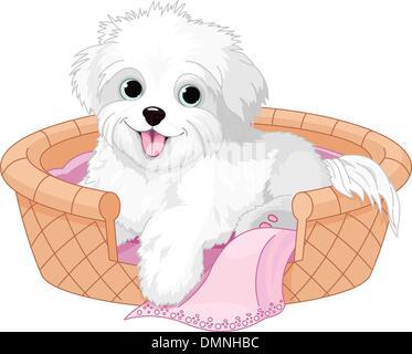 White fluffy dog - Stock Photo