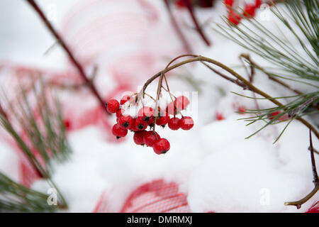 Toronto, Canada. 15th December 2013. Toronto gets hit by a wallop of snow Credit:  Nisarg Photography/Alamy Live - Stock Photo