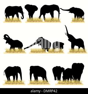 12 Elephants Silhouettes Set - Stock Photo