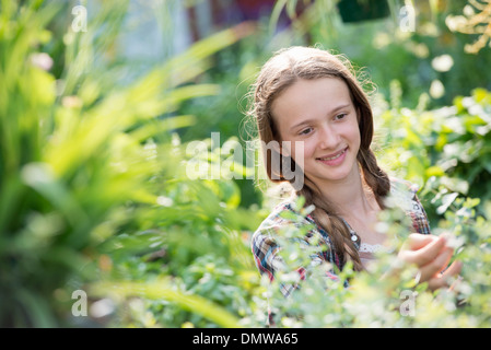 Summer on an organic farm. A young girl in a plant nursery full of flowers. - Stock Photo