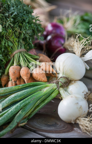 Sorting and chopping freshly picked vegetables and fruits. - Stock Photo
