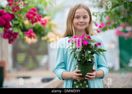 An organic flower plant nursery. A young girl holding a flowering plant. - Stock Photo