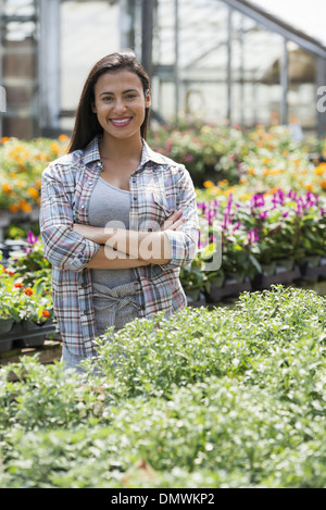 A woman in an organic nursery greenhouse. - Stock Photo