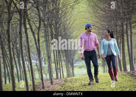 A couple walking between two rows of trees. - Stock Photo