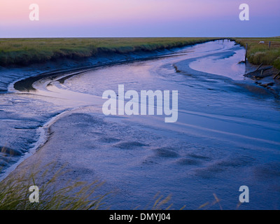 Tidal creek at Westerhever, Eiderstedt peninsula, North Frisia, Schleswig-Holstein, Germany - Stock Photo