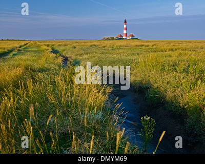 Lighthouse Westerheversand, Eiderstedt peninsula, North Frisia, Schleswig-Holstein, Germany - Stock Photo