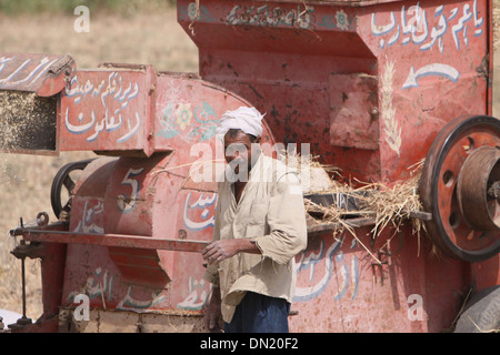 Man of the harvest . - Stock Photo
