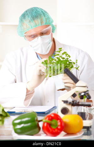 Researcher holding up a GMO vegetable - Stock Photo