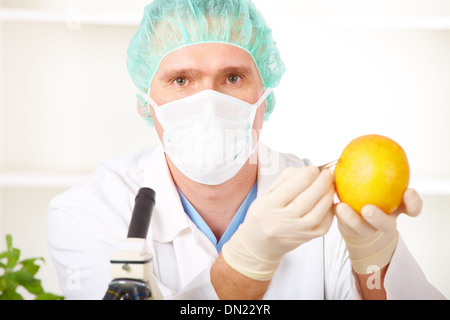 Researcher holding up a GMO vegetable in the lab - Stock Photo