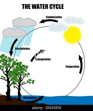 Schematic representation of the water cycle in nature - Stock Photo