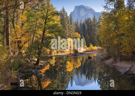 Half Dome and fall foliage reflected in the Merced River, Yosemite Valley, California, USA. Autumn (October) 2013. - Stock Photo