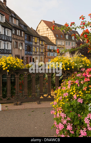 Elk213-2754v France, Alsace, Colmar, Petit Venise with half-timbered houses - Stock Photo