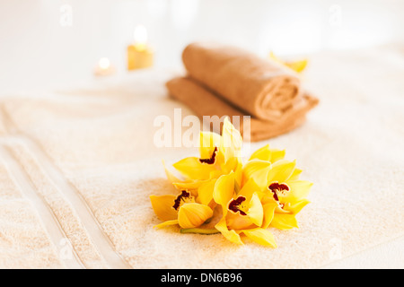closeup of vase, flowers and oil - Stock Photo