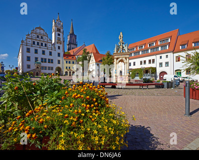 Neumarkt with fountain, town hall and St. Aegedien church in Oschatz, Nordsachsen district, Saxony, Germany - Stock Photo