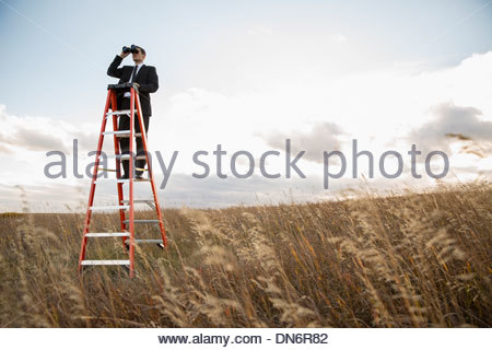 Businessman looking through binoculars on ladder - Stock Photo