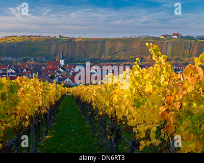 View over vineyards to Nordheim with Vogelsburg monastery at Volkach, Franconia, Bavaria, Germany - Stock Photo