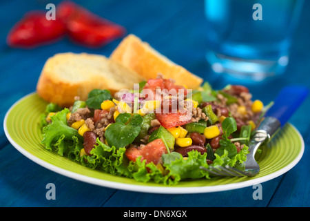 Chili con carne salad made of mincemeat, kidney beans, watercress, green bell pepper, tomato, sweet corn and red - Stock Photo