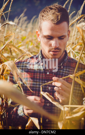 Young man standing in cornfield, portrait