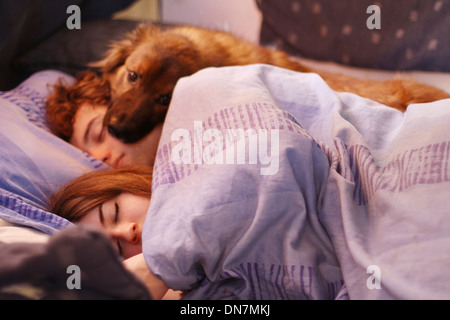 Loving couple in bed with dog - Stock Photo