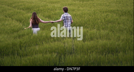 Young couple walks hand in hand through cornfield