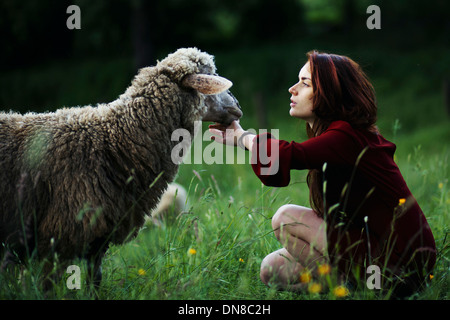 Young woman with sheep on a meadow - Stock Photo