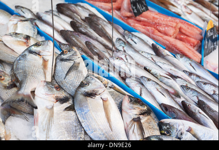 Fresh fish on sea food market stall in Provence, France - Stock Photo