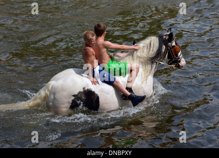 Gypsy traveller boys riding horse in River Eden. Appleby Horse Fair, Appleby-in-Westmorland, Cumbria, England, United - Stock Photo