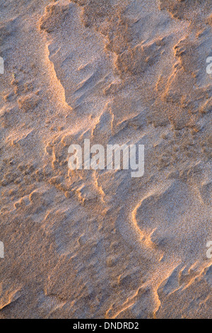 A pattern in the sand sculpted by the wind and accentuated by the sunset on Rhossili beach, Gower Peninsula. - Stock Photo