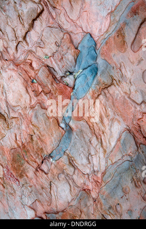 A close up photograph of unusual rock patterns in the cliffs at Bigbury-on-sea, Devon, England - Stock Photo