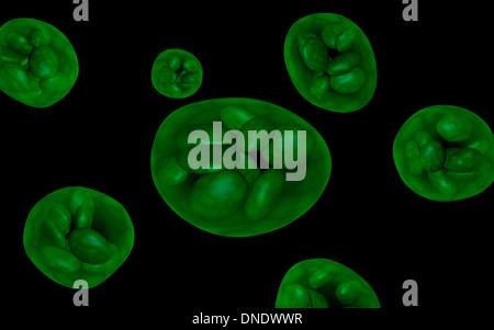 Conceptual image of chloroplast. - Stock Photo