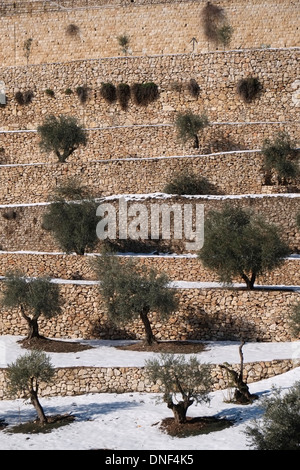 Snow blankets of the Kidron Valley or Wadi an-Nar on the eastern side of The Old City of Jerusalem, Israel - Stock Photo