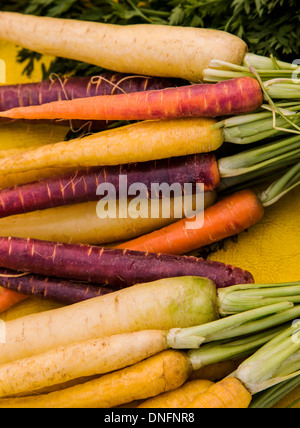 Variety of colorful carrots for sale, Buena Vista, Colorado, Farmer's Market - Stock Photo