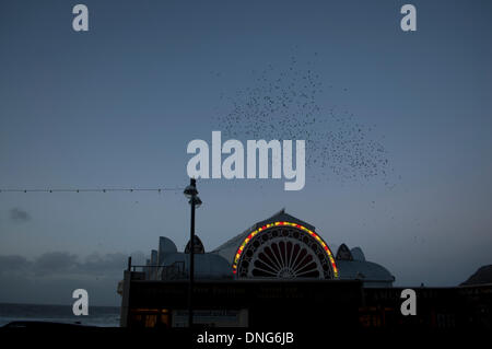Aberystwyth, Wales, UK. 27th December 2013. Starlings coming home to roost under Aberystwyth Pier. Credit:  Barry - Stock Photo