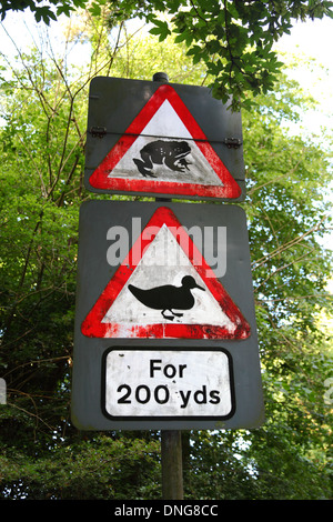 Beware, ducks and toads on the road sign near village pond , Southborough Common , near Tunbridge Wells , Kent , - Stock Photo