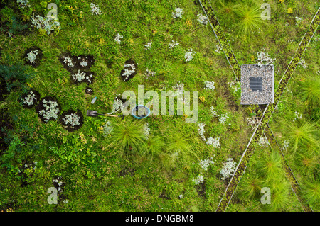 A green roof in The Montreal Biosphere. Formerly a World Fair pavilion, it is now a museum dedicated to the environment. - Stock Photo
