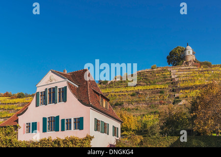 House Fliegenwedel is a Baroque winegrower's House, Radebeul near Dresden, administrative district Meissen, Saxony, - Stock Photo